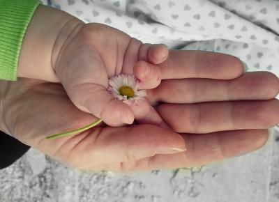 1. Изграждане на доверие към света и околните