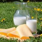Препоръчителни количества мляко и млечни продукти