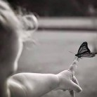 """Нужда от подкрепа за """"пеперудените"""" хора"""