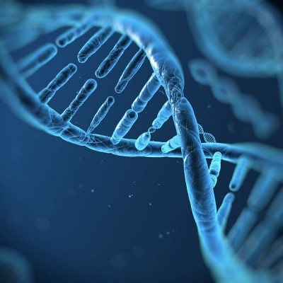 Гените, храната и детското здраве