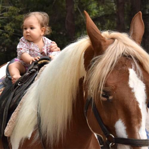 Децата и конете