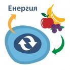 Метаболизъм, хранене и боледуване