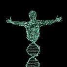 """Нови изследвания: специални молекули в плодовете и зеленчуците """"регулират """" работата на генома"""