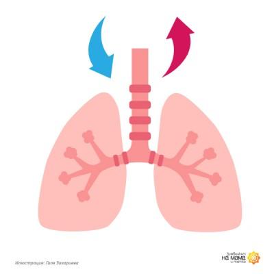 Как дишаме