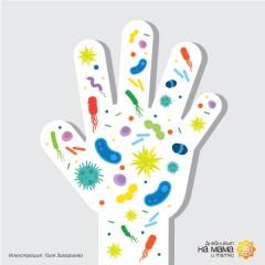 Бактерии и бактериални инфекции