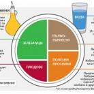 Чиния на здравословното хранене - схема