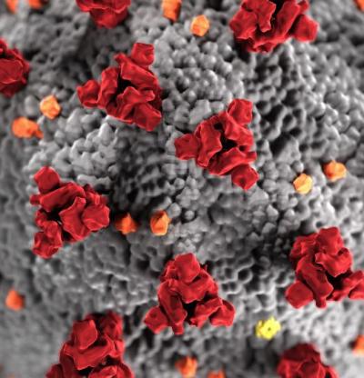 Д-р Джак.П.Шонкоф, Харвард: Стрес, надежда и роля на науката: реагиране на пандемията на коронавируса