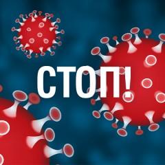 Мерки за по-добро здраве и по-добре функционираща имунната система